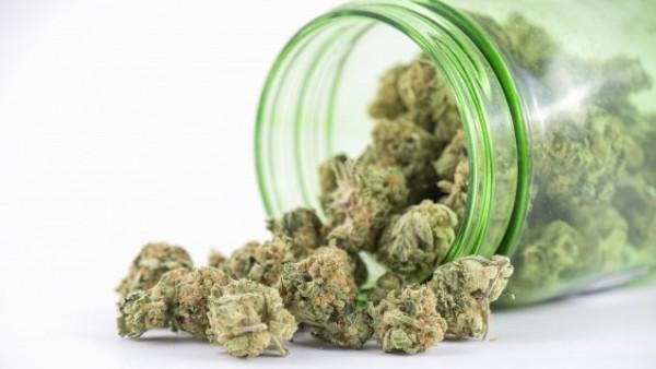 Marihuana für 1,30 US-Dollar aus der Apotheke