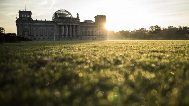 Im Bundestag debattieren die Abgeordneten heute über verschiedene Anträge zum Thema Organspende. (s / Foto: imago / Steiner)