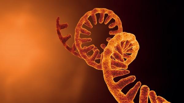 Gibt es bald die ersten mRNA-Grippeimpfstoffe?