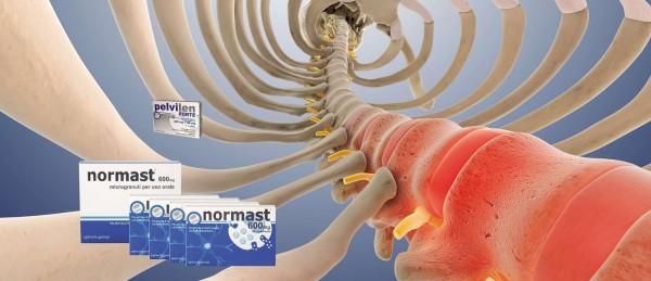 Palmitoylethanolamid gegen Schmerzen - Ein sicheres diätetisches Lebensmittel für medizinische Zwecke?
