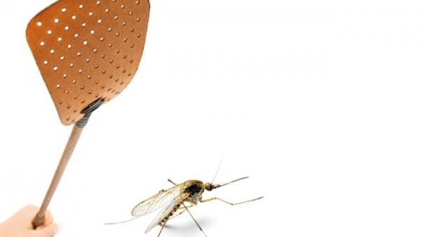 Teamschulung zum Schutz vor Parasiten