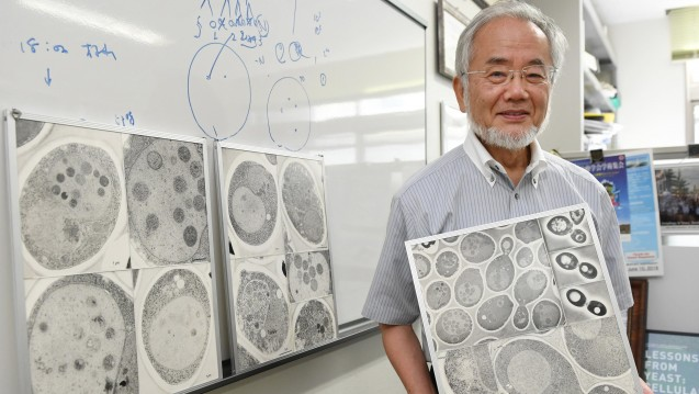 Wegweisende Forschung: Der Japaner Yoshimori Ohsumi hat den Medizin-Nobelpreis 2016 gewonnen. (Foto: dpa)