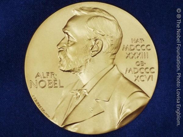 Medizin-Nobelpreis für Müllrecycling in Körperzellen