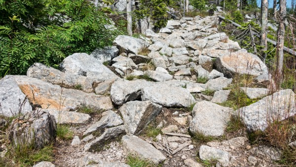 Der steinige Weg zur nächsten Apotheke