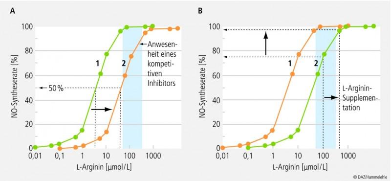 Arginin bei Atherosklerose