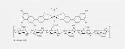 Abb_01-02_Protocyanin.eps