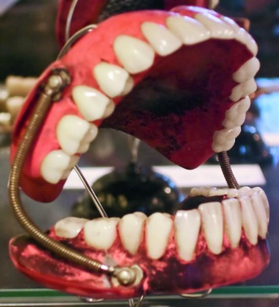 D0509_dentalmuseum_prothes.jpg