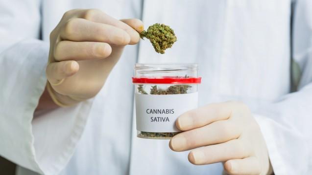 In der Schweiz soll es Cannabis in Pilotprojekten bald frei aus der Apotheke geben. Viele Politiker wollen das aber nicht. (Foto: dpa)