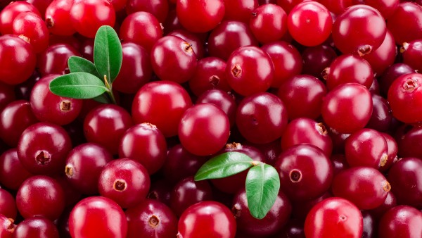 Cranberries nicht besser als Placebo