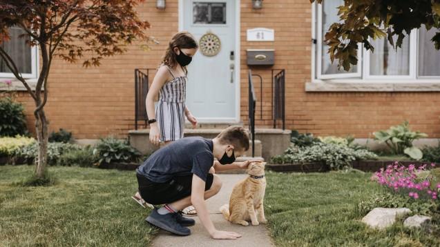 Der Kontakt gesunder Menschen zu Haustieren muss aus derzeitiger Sicht des Friedrich-Loeffler-Instituts (FLI) nicht eingeschränkt werden. Infizierte Menschen sollten den Kontakt zu Haustieren aber meiden. (x / Foto: imago images / Westend61)