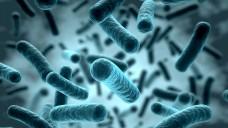 """5 Mio. Pfund für die Forschung: In Großbritannien werden den """"superbugs"""" der Kampf angesagt. (Foto: norman blue/Fotolia)"""