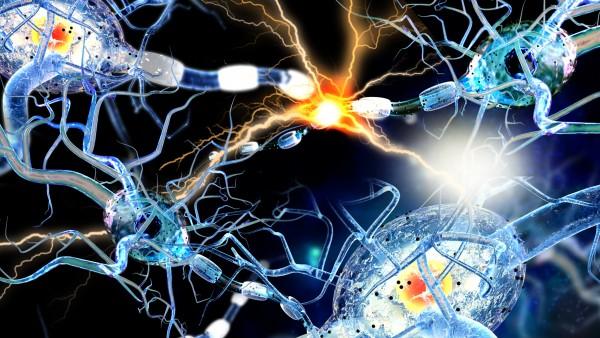 EMA empfiehlt Zulassung von Ofatumumab bei aktiver schubförmiger MS