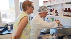 Interesse an Rezepturen: Die SPD-Politikerin Sabine Dittmar besuchte am Tag der Apotheke eine Offizin im Berliner Hauptbahnhof und sprach sich für ein höheres Apothekenhonorar aus. (Foto: Büro Dittmar)