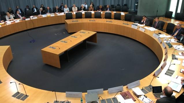 Diskussion über Honorar, Versandhandel und Preisbindung: Im Gesundheitsausschuss des Bundestages wurden unter anderem Apotheker und Versandapotheker zum Apothekenmarkt befragt. (Foto: DAZ.online)