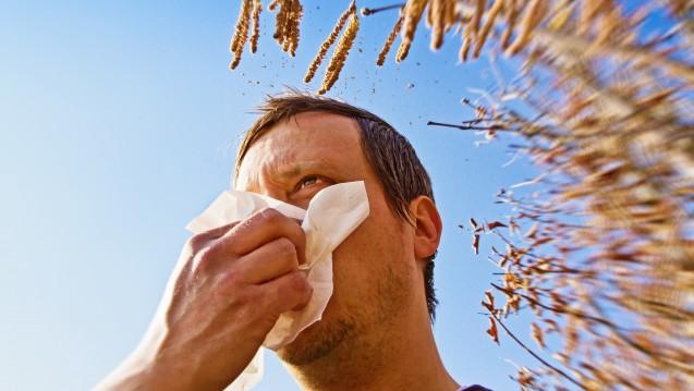 In Deutschland fliegen die ersten Pollen. (Foto: Jürgen Fälchle / stock.adobe.com)