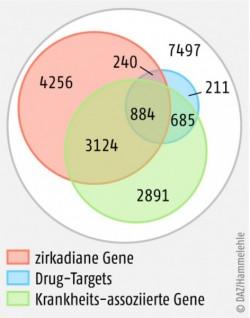 Bild 183605: 46_cae_prisma-gene