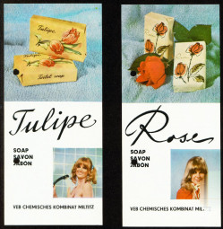 D3112_feu_schmimmel_tulipe.jpg