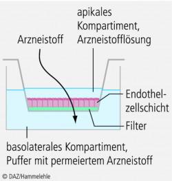 Fischer_04.eps
