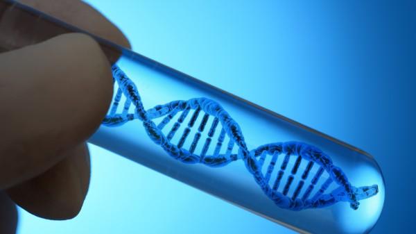 Wissenschaftler fordern vorsichtigen Umgang mit Gentechnik bei Embryonen