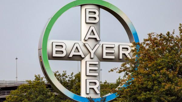 Bayer erhöht Dividende erneut