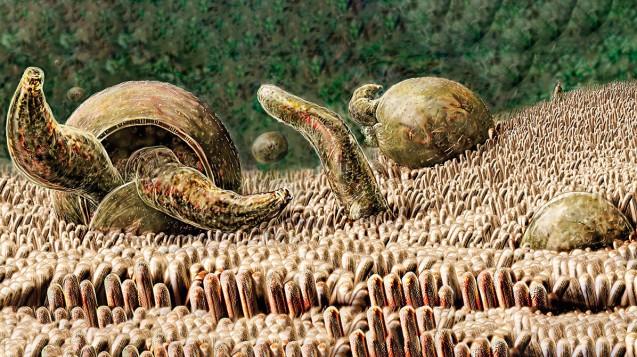 Kryptosporidiose: häufiger als FSME und dennoch nahezu unbekannt. (Foto: Kightley, Russell / Science Photo Library)