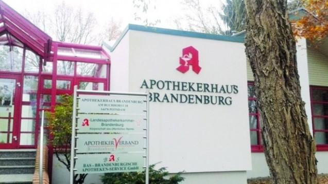 Die Apothekerkammer Brandenburg will nach dem EuGH-Urteil Geschlossenheit im Apothekerstand demonstrieren. (Foto: DAZ)