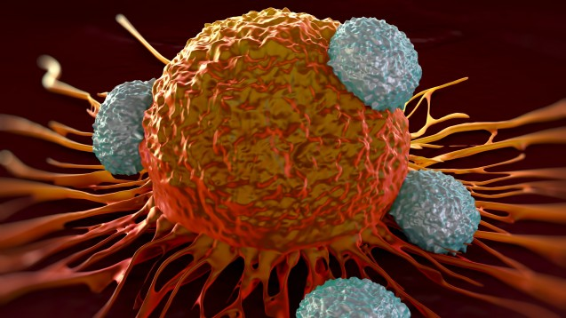 Bei der Immuntherapie gegen Blutkrebs starben drei Probanden. (Foto: royaltystockphoto / Fotolia)
