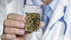 Cannabis als Medizin - die Regierung besteht auf geprüfte Arzneimittelqualität. (Foto: Willian Casey/Fotolia)
