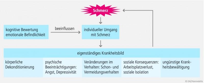 somatische und psychische faktoren der reifeentwicklung schmidt m