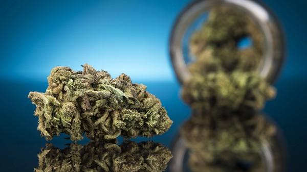 Apotheker fordern Friedenspflicht für Cannabis-Abrechnungen