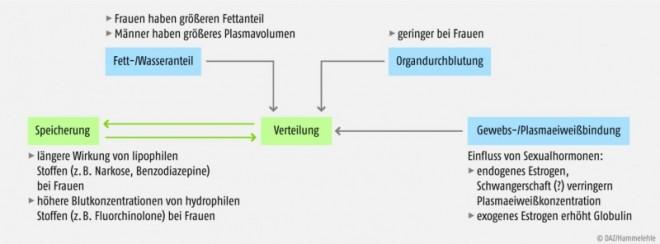 Bild 174438: 36_jb_gender_nieber_04