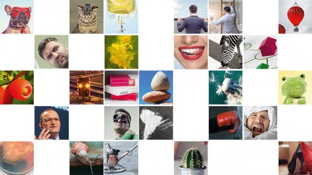 Welches DAZ-Titelbild aus diesem Jahr fanden Sie am schönsten? (Foto: DAZ)