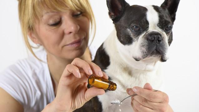 Eine Petition setzte sich für Homöopathie in der Tiermedizin ein. (Foto: Wolfilser / Fotolia)