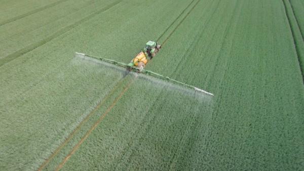 EU-Staaten uneins über Glyphosat-Zulassung