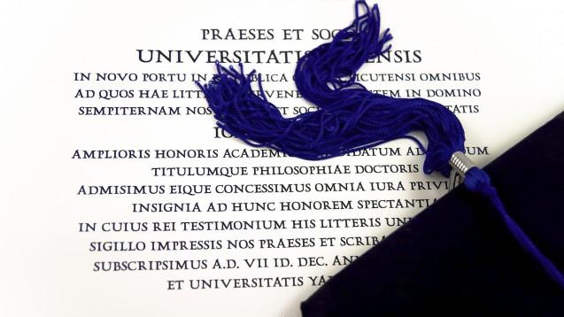 Wer seinen Abschluss im Ausland erworben hat, muss unter Umständen eine Kenntnisprüfung ablegen. (Foto:Ioana Davies (Drutu) / stock.adobe.com)