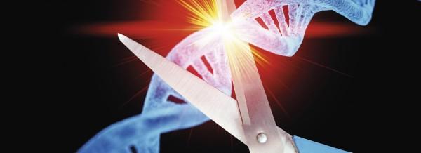 "Aufregung um ""CRISPR""-Babys"