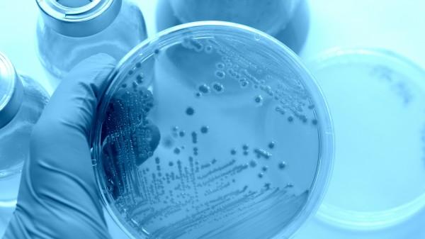 Glaeske fordert Antibiotika-Leitlinie für Ärzte