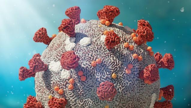 Hongkonger Forscher haben eigenen Angaben zufolge erstmals eine erneute Corona-Ansteckung bei einem bereits länger genesenen Patienten nachgewiesen. (Foto:dottedyeti / stock.adobe.com)