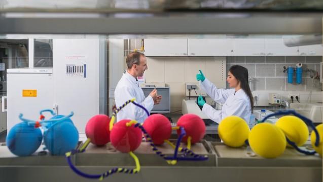 Mit farbigen Bällen und Pfeifenreinigern veranschaulichen Prof. Oliver Lieleg und Doktorandin Ceren Kimna, wie DNA-Stücke Nanopartikel miteinander verbinden können. (Foto: Uli Benz / TU Muenchen)