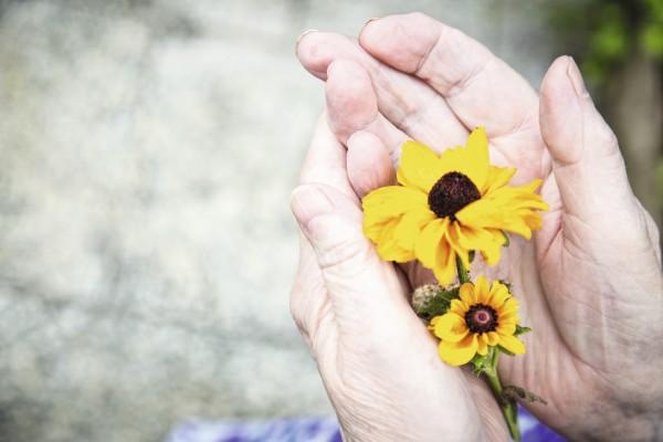 Schwerpunkt Palliativmedizin