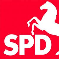 D032013_ak_wahl-spd.jpg
