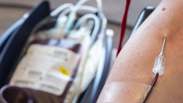 Die Medizinische Hochschule Hannover sowie das Universitätsklinikum Münster rufen gesundete Coronapatienten für neue COVID-19-Studien zu Blutspenden auf, um Antikörper und T-Lymphozyten zu gewinnen. (m / Foto: imago images / photo2000)