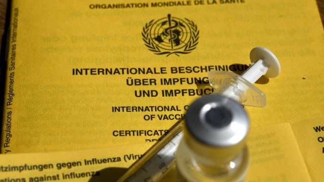 Das gelbe Impfbuch soll digital werden. Möglicherweise dürfen dann auch Apotheker:innen Ergänzungen vornehmen. (c / Foto: IMAGO / Laci Perenyi)