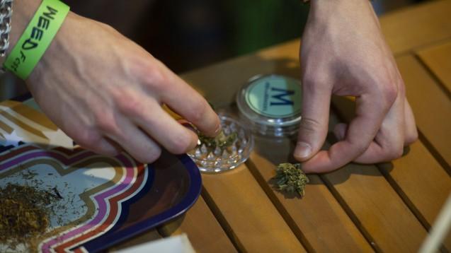Expert:innen fordern mehr Investitionen in die Forschung – sowohl zu den Gefahren, die mit dem Konsum von Cannabis einhergehen, als auch zu einem möglichen medizinischen Nutzen der Droge. (Foto: IMAGO / ZUMA Wire)