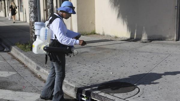 Mücken verbreiten Zika in Florida