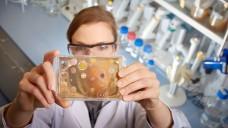 Antibiotika - mehr Forschung und mehr Aufklärung sind wichtig. (Foto: Sanofi)