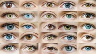 Vier Augen sehen mehr als zwei