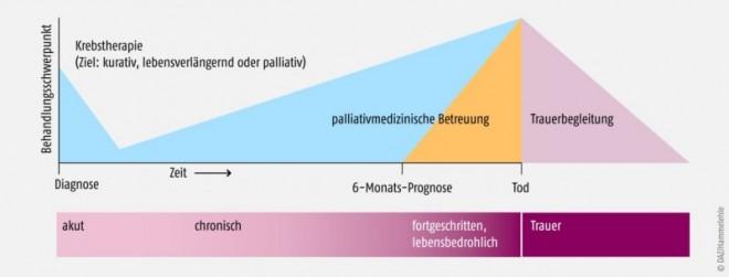 Bild 178735: 12_jb_palliativ-grafik