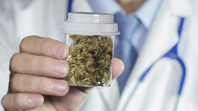 Cannabis aus der ABDA muss strengen Qualitätsanforderungen genügen - fordert die ABDA. (William Casey/Fotolia)