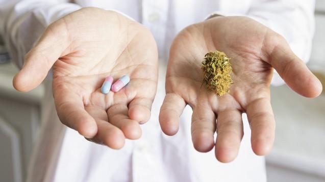 Cannabis als Medizin – hat es mehr Missbrauchspotenzial als andere Arzneimittel? Die Arbeitsgemeinschaft Cannabis als Medizin, der Verband der Cannabis versorgenden Apotheken und das Selbsthilfenetzwerk Cannabis Medizin meinen: nein! (c / Foto: eight8 / Stock.adobe.com)